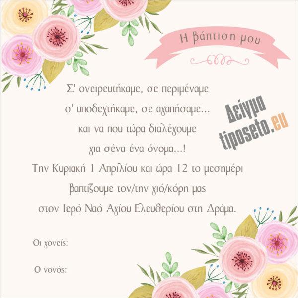 tiposeto_vaptisi_27